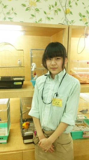 エバーペット宮原店05.JPG